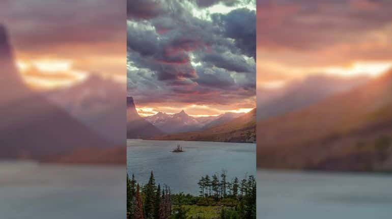 The image that is causing the bug on phones | Courtesy Twitter user @IceUniverse