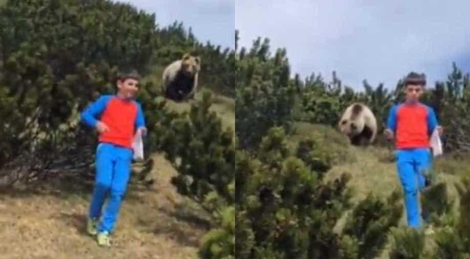 Boy calmly walks away from pursuing brown bear