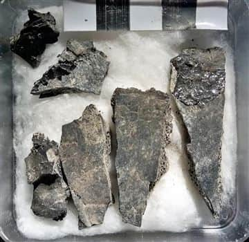 Bone fragments from the victim's skull. The intense heat caused the skull to burst open. The glassy black material on some of the skull fragments are the vitrified brain tissue.