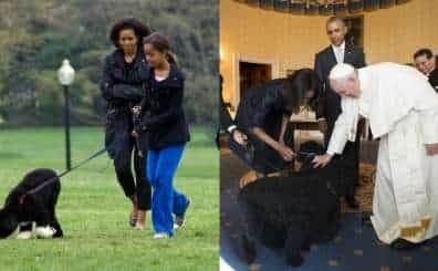 The Obama family with their dog, Bo.